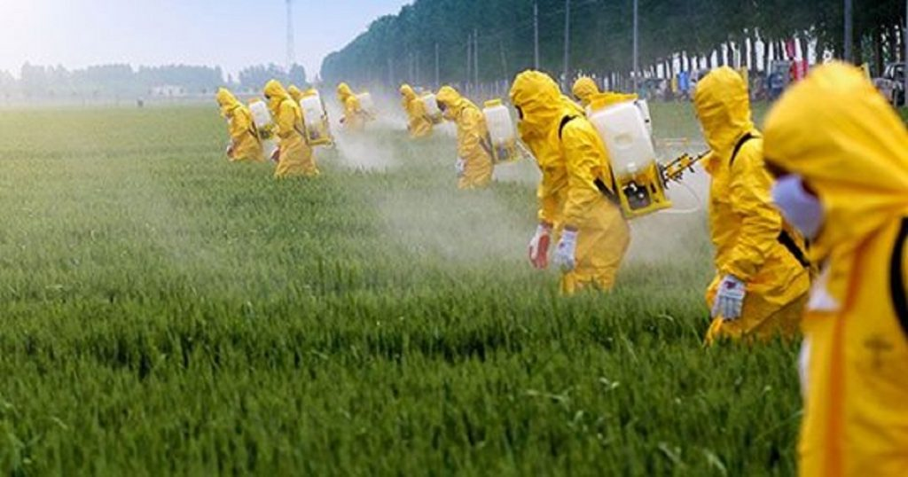 glyphosate effects